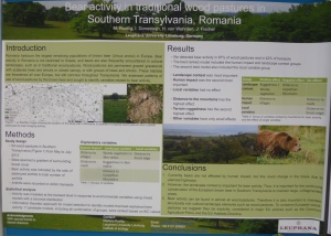 Poster by Marlene Roellig got the second poster prize on the SCCS