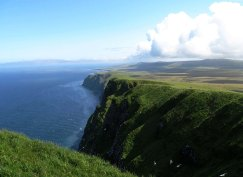 View of the tall cliffs on St. George with breeding kittiwakes. Photo by Rebecca Young