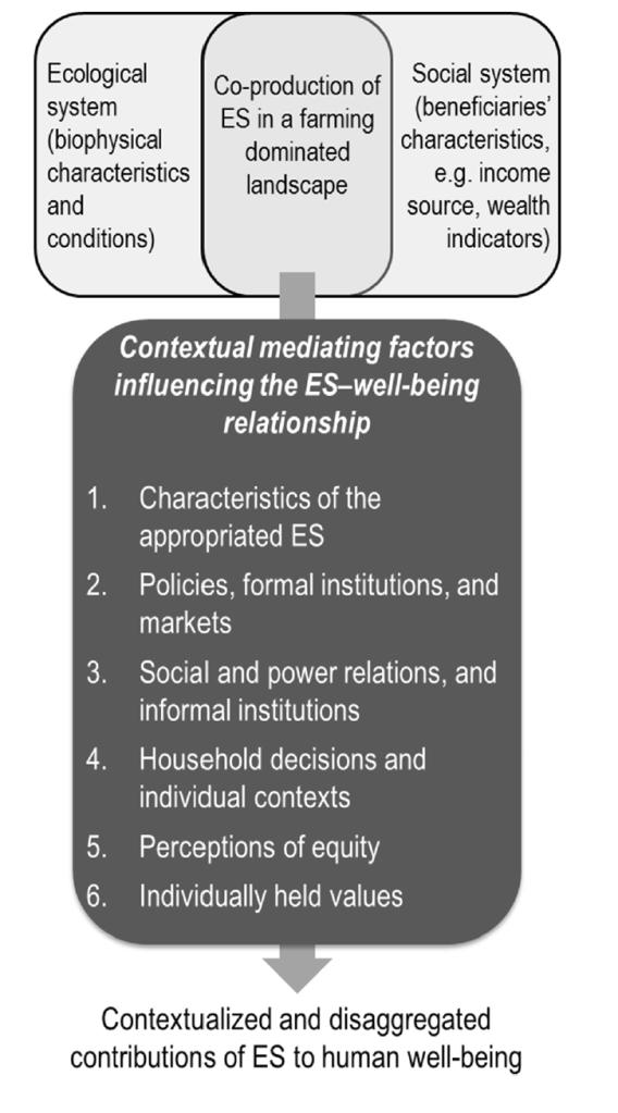 Conceptual model of mediating factors (MMF)