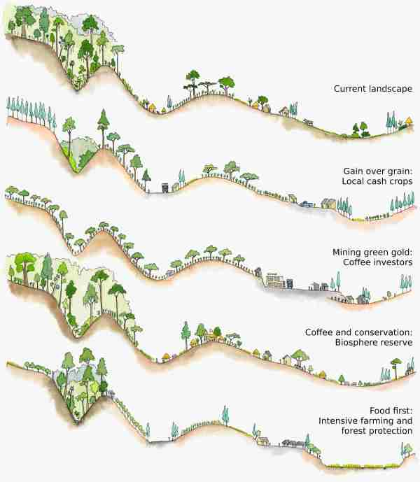 Landscape cross-sections for the different scenarios